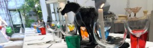 cropped-sculpturen-en-gedekte-tafel-1.jpg